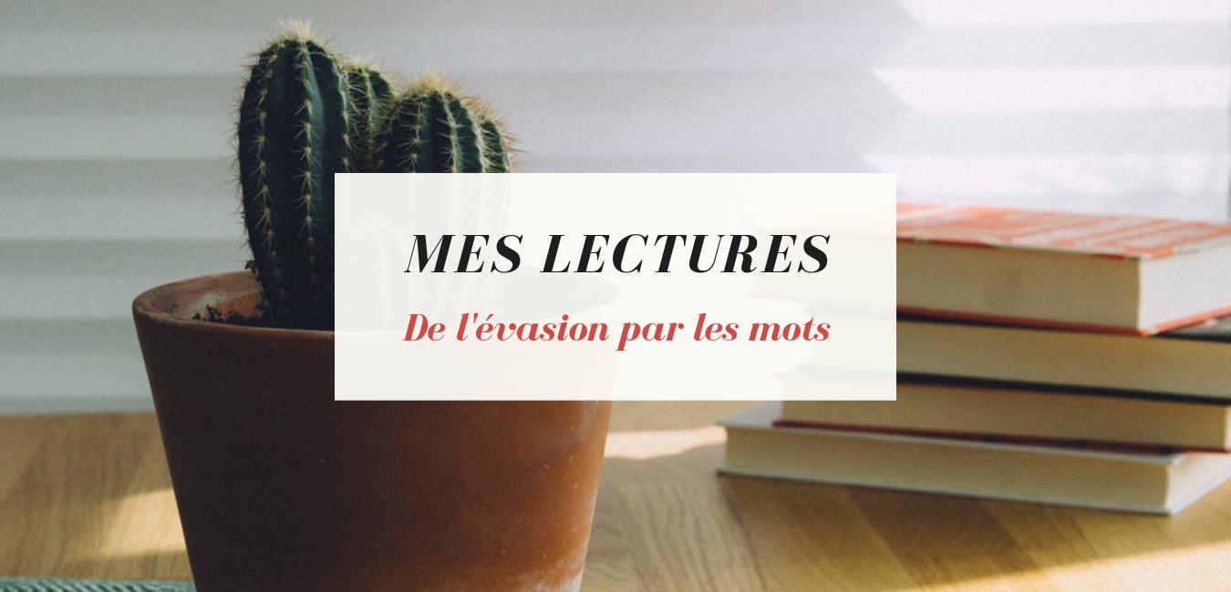 Banière page Mes lectures, Cactus sur une table avec une pile de livres