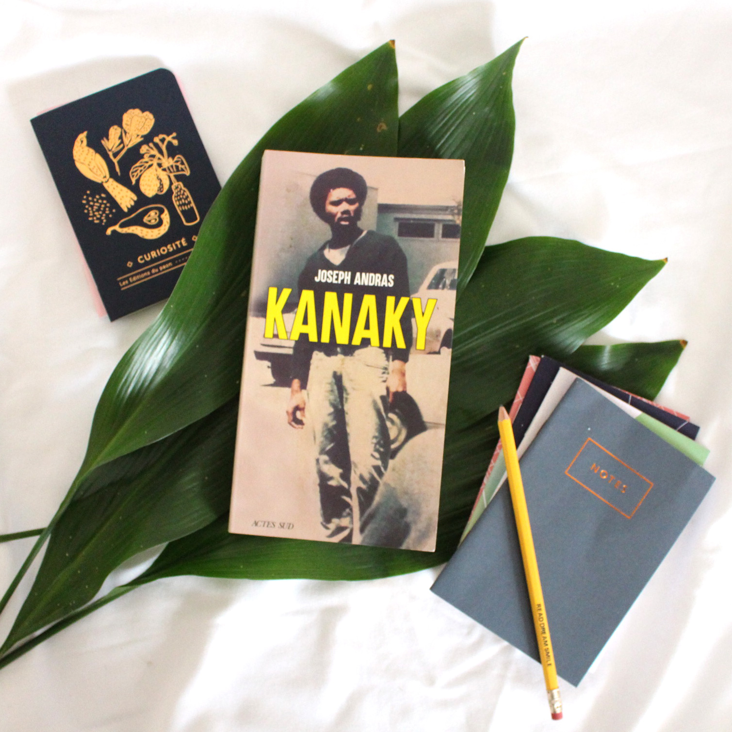 Kanaky, Joseph Andras, Editions Actes Sud