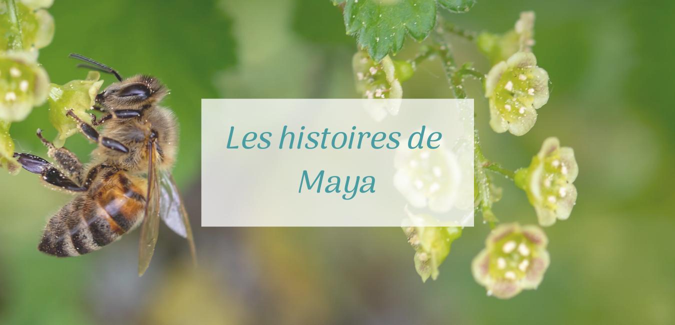 Couverture les histoires de Maya